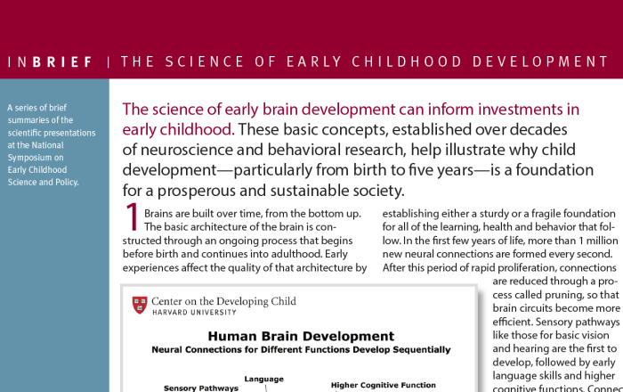 InBrief: The science of early childhood development cover thumbnail