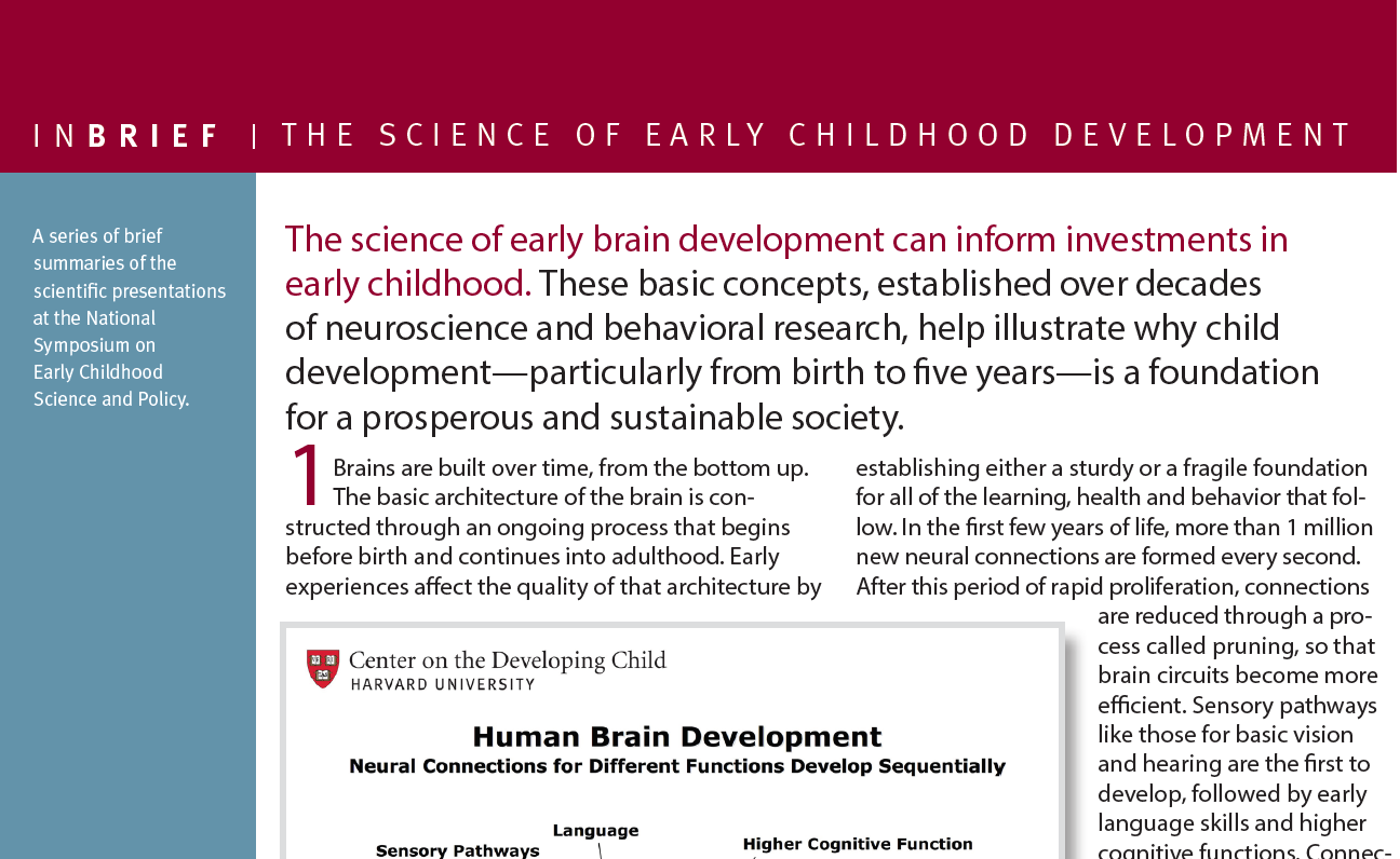Experiences build brain architecture center on the developing briefs inbrief the science of early childhood development ibookread Read Online