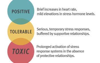 Image for Toxic Stress