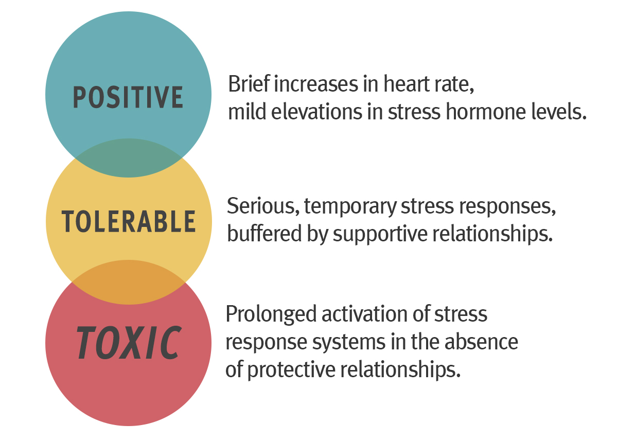 A Guide To Toxic Stress And Its Effects >> A Guide To Toxic Stress Center On The Developing Child At Harvard