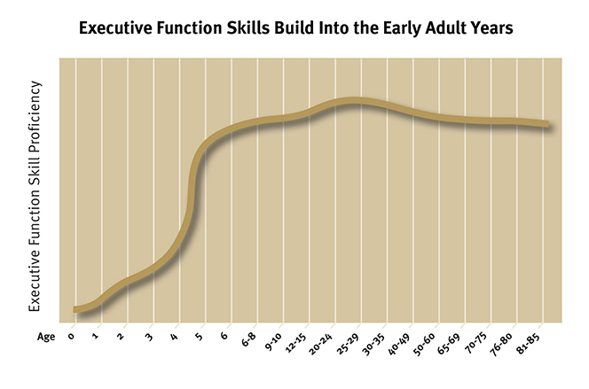 Tests measuring different forms of executive function skills indicate that they begin to develop shortly after birth, with ages 3 to 5 a window of opportunity for dramatic growth in these skills. Development continues throughout adolescence and early adulthood.