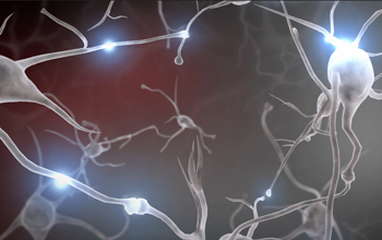 Experiences Build Brain Architecture video still, showing neurons firing and growing