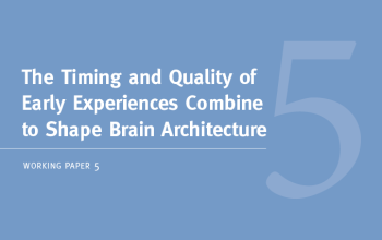 reports working papers the timing and quality of early experiences combine to shape brain architecture