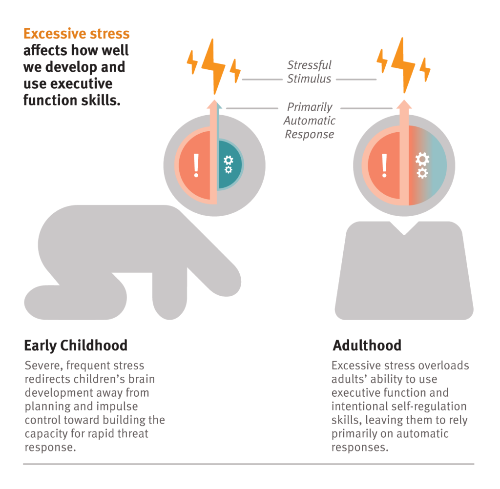 Animated GIF: Excessive stress affects how well we develop and use executive function skills