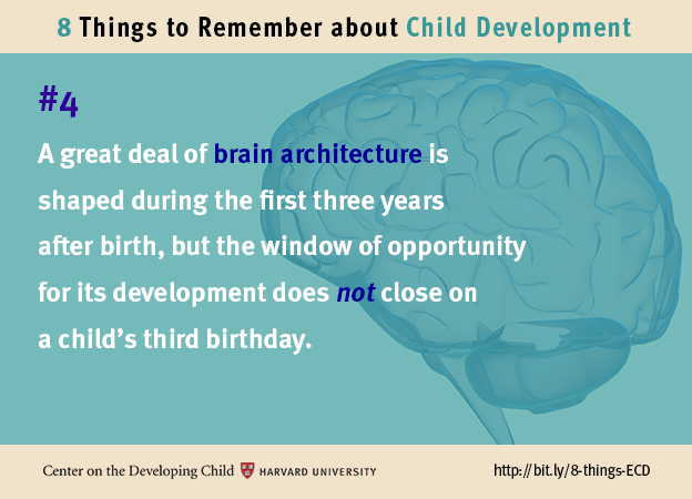 Number 4: A great deal of brain architecture is shaped during the first three years after birth, but the window of opportunity for its development does not close on a child's third birthday.