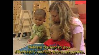 Image for InBrief: The Impact of Early Adversity on Children's Development (Czech subtitles)